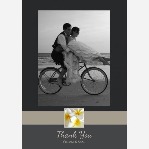wedding-frangipani-p-th.jpg